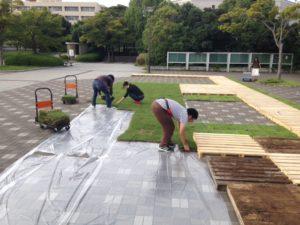 和歌山大学での芝生エリアの試験設置の様子